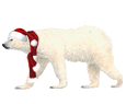 Polar Bear ##STADE## - look 117