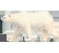 Polar Bear ##STADE## - look 7