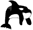 Orca Whale ##STADE## - look 16025